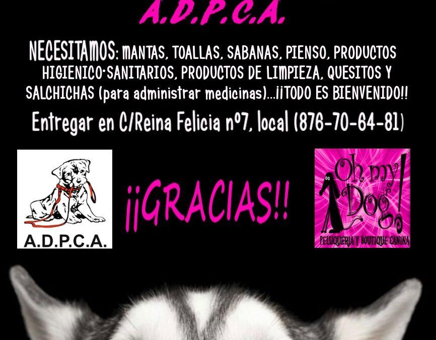 6ª RECOGIDA ANUAL DE «OH MY DOG»